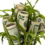 טיפים לקבלת הלוואה